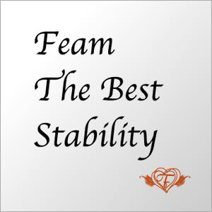 Feam The Best Stability